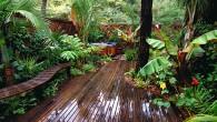 HOME TIP : การดูแลสวนสวยๆของเราในฤดูร้อน