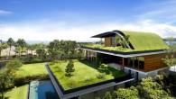 แจกแบบบ้าน Modern sky garden (แจกแบบบ้านฟรี)